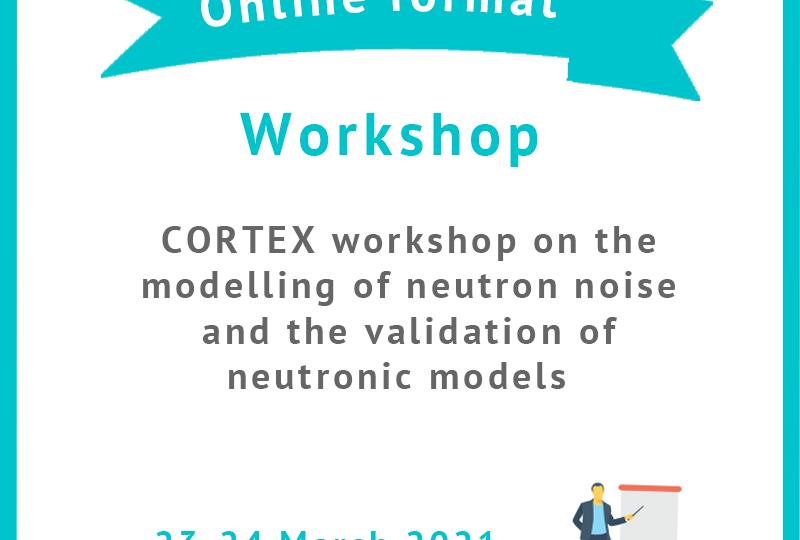 Workshop modelling neutron noise