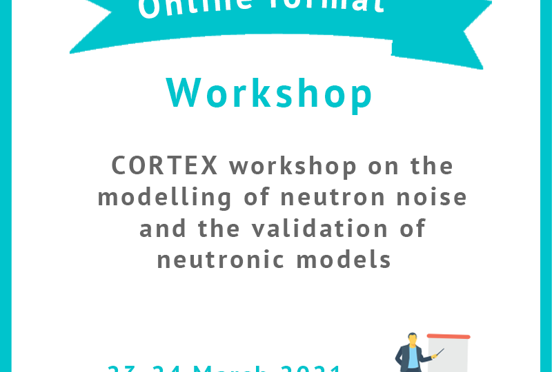Workshop modelling neutron noise